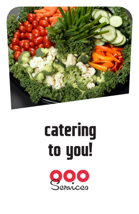 HomePage Catering module 250x400